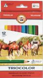 Koh-i-noor pastlky TRICOLOR trojhranné souprava 12 ks v papírové krabičce - KOH-I-NOOR HARDTMUTH