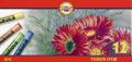 Křídy prašné umělecké 12ks Toison D´or - KOH-I-NOOR
