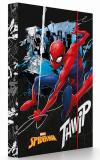 Box na sešity A4 Spiderman - Karton P+P