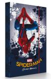 Box na sešity A4 Spiderman -