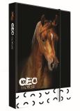 Box na sešity A4 Jumbo GEO WILD kůň - Karton P+P