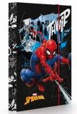 Box na sešity A5 Spiderman - Karton P+P