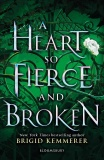 A Heart So Fierce and Broken - Brigid Kemmererová