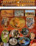 Magnetky Africká divočina - Kol. autorů