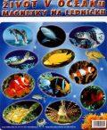 Magnetky Život v oceánu - Kol. autorů