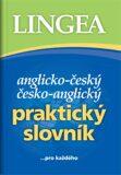 Anglicko-český česko-anglický praktický slovník - kolektiv autorů