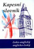 Anglicko-český, česko-anglický slovník s výslovností - Kolektiv autorů