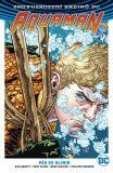 Aquaman 1: Pád do hlubin - Dan Abnett