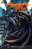 Batman: Temný rytíř 2: Kruh násilí - David Finch, ...