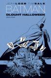 Dlouhý Halloween 1 - Jeph Loeb, Tim Sale