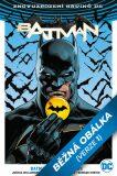 Batman / Flash - Odznak - Tom King