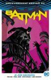 Batman - Já jsem sebevražda - Tom King