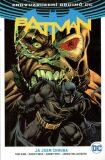 Batman Já jsem zhouba - Tom King