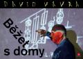 Běžet s domy - David Vávra