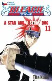 Bleach 11: A Star and a Stray Dog - Tite Kubo