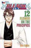 Bleach 12: Flower on the Precipice - Tite Kubo