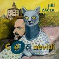 Co oči nevidí - Jiří Žáček