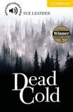 Dead Cold - Stephen Leather