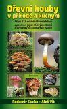 Dřevní houby v přírodě a kuchyni - Radomír Socha, Vít Aleš