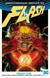 Flash 4 - Zběsilý útěk - Joshua Williamson