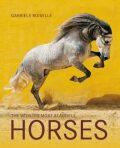 Horses The World´s Most Beautiful - Gabrielle Boiselleová