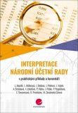 Interpretace Národní účetní rady - David Procházka, ...