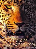 Jaké je to být gepardem a leopardem - Denis-Huot CHristine, Michel