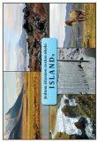 Jednou úžasnou cestou okolo Islandu - Řezníčková Blanka