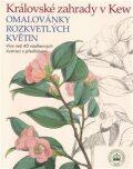 Královské zahrady v Kew - Omalovánky rozkvetlých květin - Edice Knihy Omega