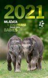 Nástěnný kalendář Zoo Praha 2021 - Mláďata v Zoo Praha - Zoologická zahrada v Praze