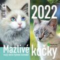 Kalendář 2022 - Mazlivé kočky, malý stolní týdenní, 143 x 140 mm - Glos