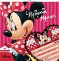 Plánovací kalendář Minnie, nedatovaný, 30 x 30 cm - Walt Disney
