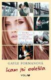Kam jsi odešla - Gayle Formanová