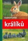 Kapesní atlas králíků - Petra Ahrens, Josef Wolters