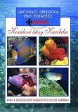 Korálové útesy v karibiku - Určovací příručka pro potapěče - Ryby a živočichové korálových útesů Karibiku - neuveden