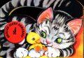 Koťátko hledá kamarády - Dana Winklerová