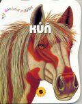 Kůň - Consuelo Delgado