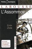 L´Assommoir - Émile Zola
