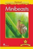 Macmillan Factual Readers 3+ Minibeasts - Anita Ganeri