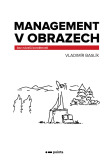 Management v obrazech - Baslík Vladimír