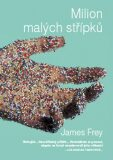 Milion malých střípků - James Frey
