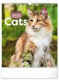 Nástěnný kalendář Kočky 2022, 30 x 34 cm - Presco Group