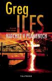 Natchez v plamenech - Greg Iles