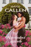 Nevšední návrh - Gayle Callen