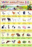 Obrázková angličtina 1 -  Zvířata - Petr Kupka