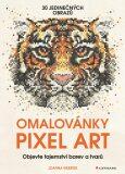 Omalovánky Pixel Art - Tajemství barev a tvarů - Joanna Webster