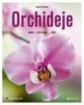 Orchideje - Druhy, pěstování, péče - Joachim Erfkamp