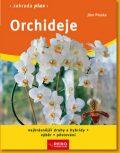 Orchideje - Jörn Pinske