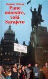 Pane ministře, volá Sarajevo - Vladimír Přibský