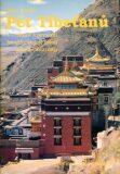 Pět Tibeťanů - Peter Kelder